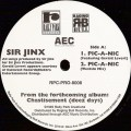 "Sir Jinx ‎– Pic-A-Nic / I Putz It Down Old Vintage Vinyl Record 12"" LP Album Hip Hop"