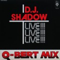 D.J. Shadow - Q-Bert Mix-Live!!